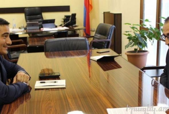 Представители диаспоры врачи готовы реализовать программы в Армении